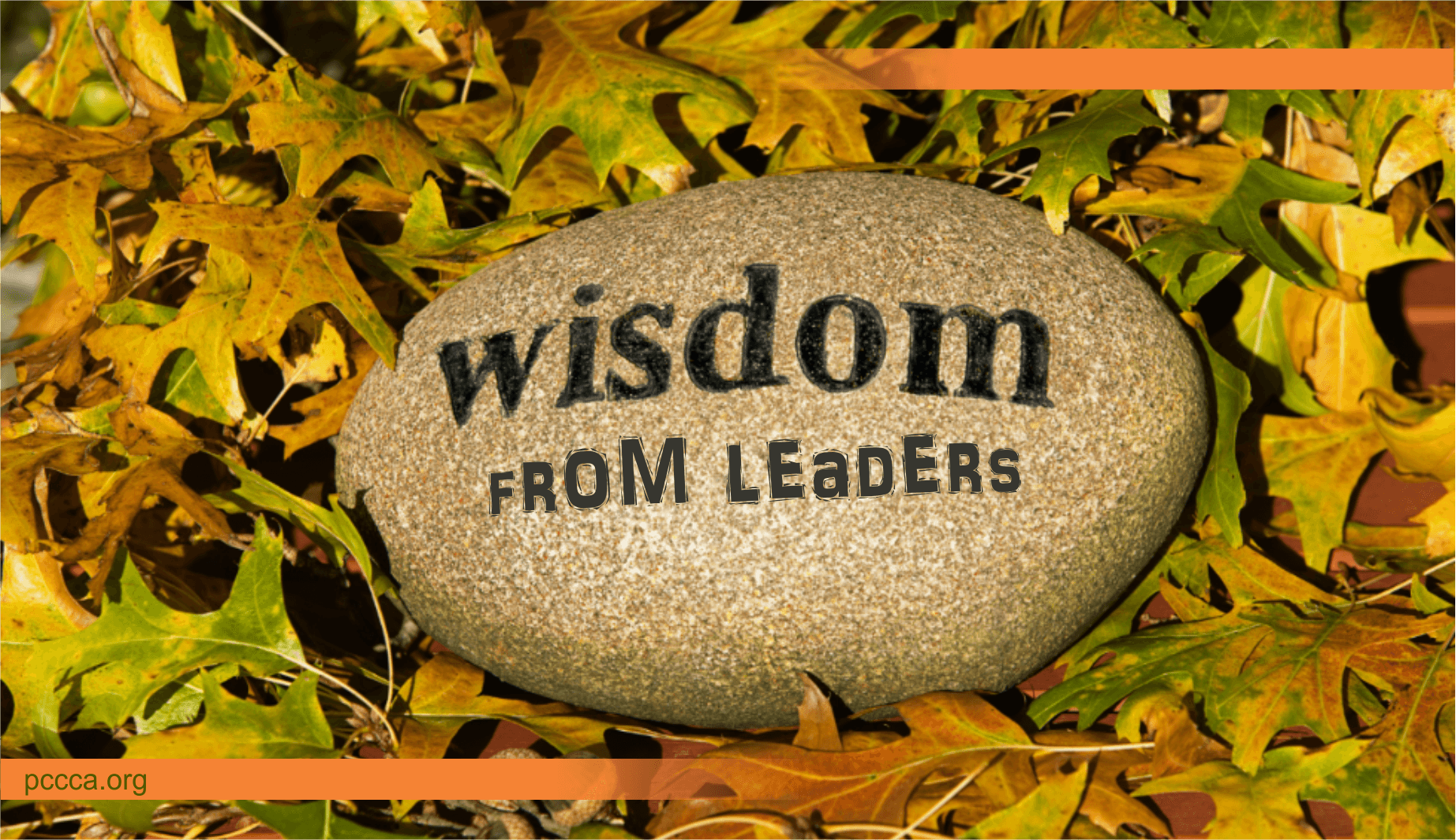 wisdom from leaders http://pccca.org