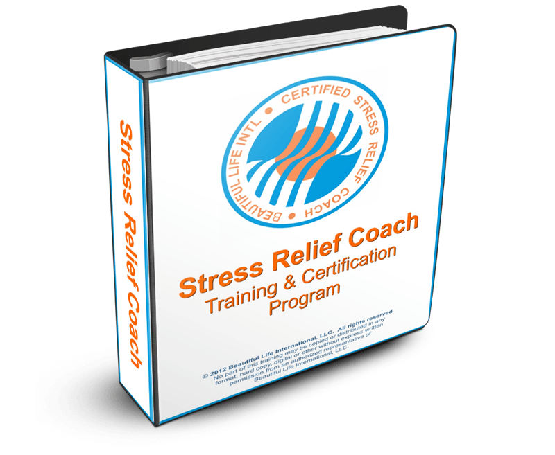 Stress Relief MANUAL Cover 3D
